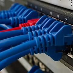 de Netwerkkabel